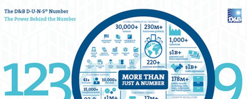D-U-N-S-number-infographic-design